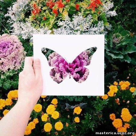 бабочки из бумаги и цветов